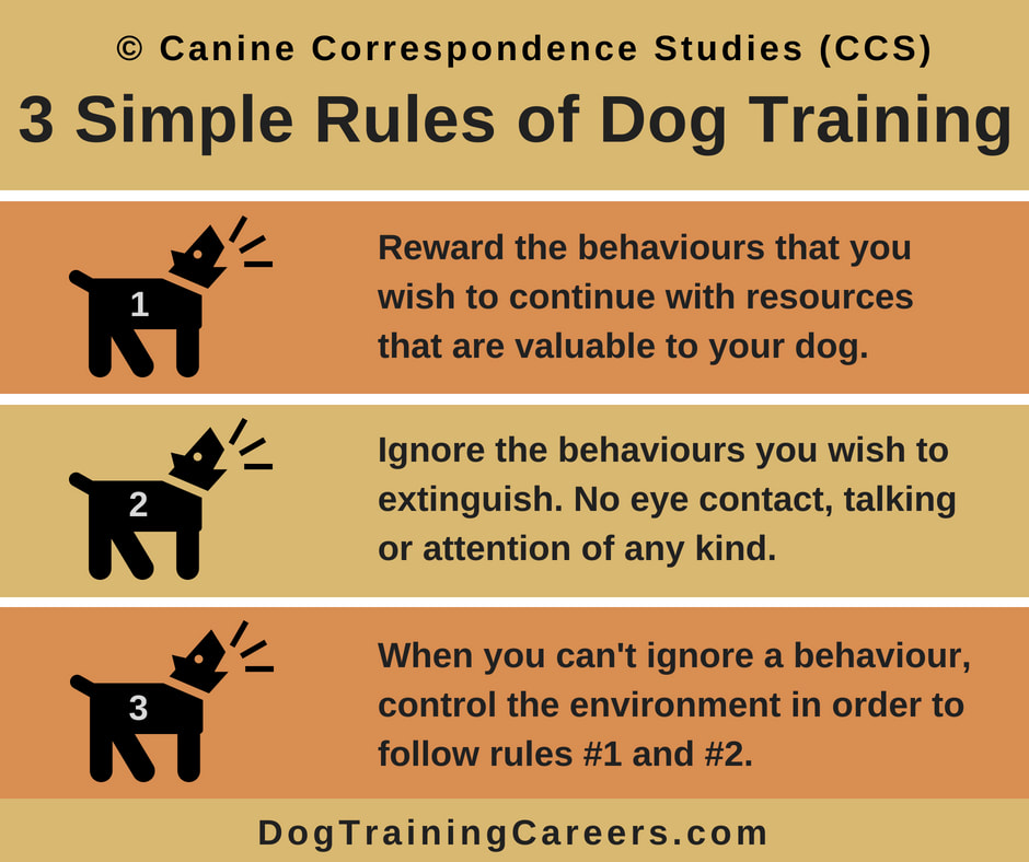 Be A Dog Trainer Dog Blog By Norma Jeanne Laurette And Greg Ceci